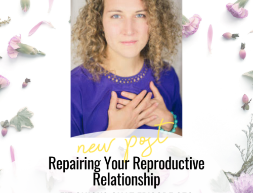 FIT CHICKS Chat Episode 358 – Repairing Your Reproductive Relationship – Interview with Rebecca Hammond